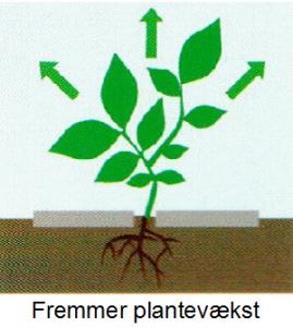 fremmer-plantevaekst-m-tekst